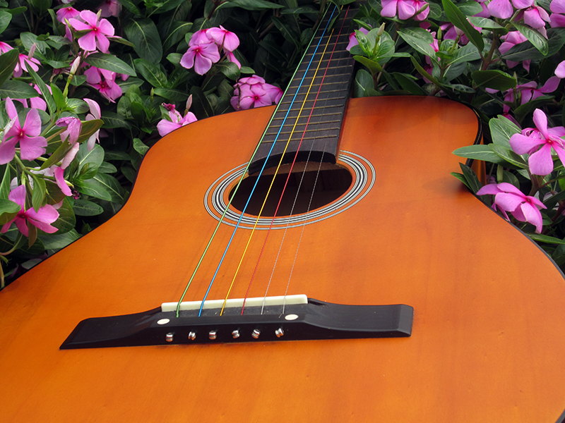 colourful acoustic guitar strings with nickel plated ball end by alice strings on guitar buy. Black Bedroom Furniture Sets. Home Design Ideas